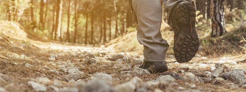 nashville tn hiking
